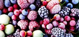 Бизнес идея: Глубокая заморозка ягод и фруктов
