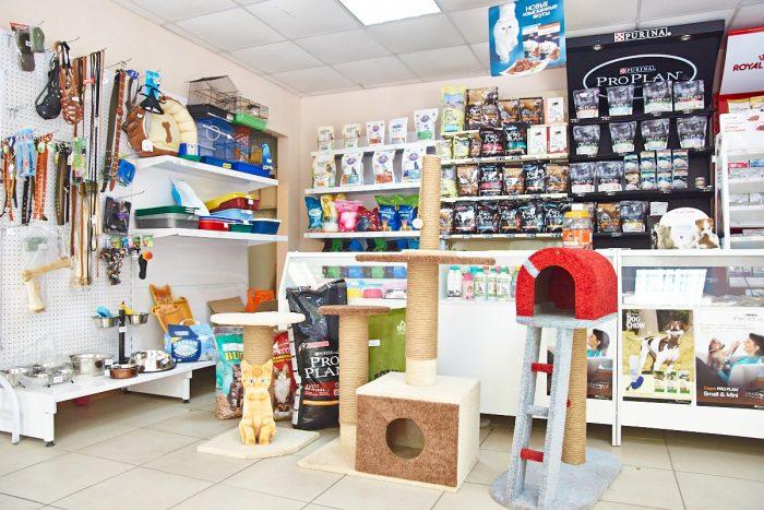 Бизнес идея: Магазин зоотоваров