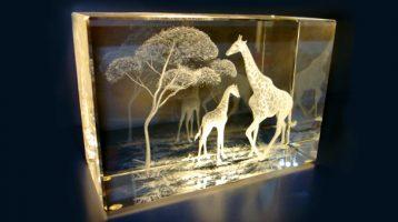 Бизнес идея: Лазерная гравировка внутри стекла