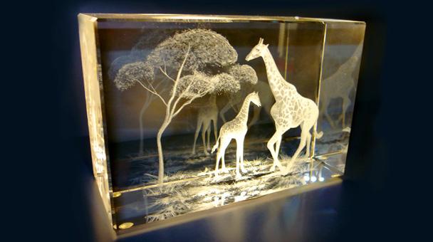 фото внутри стекла
