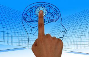 5 хитростей, которыми мозг удерживает вас во власти дурной привычки
