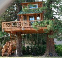 Бизнес идея: Необычный туризм, отдых в доме на дереве
