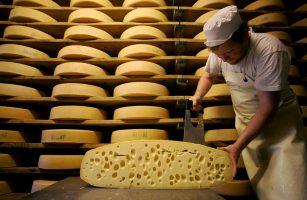 Бизнес идея: По изготовлению сыра