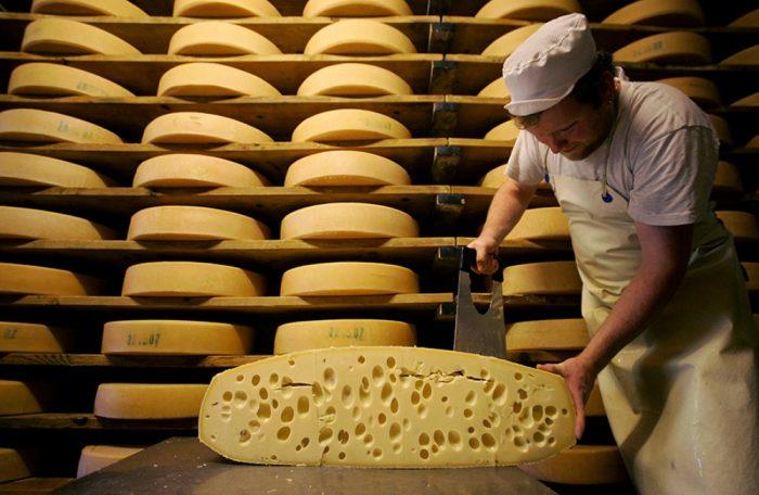 Бизнес идея: Изготовлению сыра