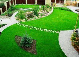 Бизнес-идея: Продажа и укладка газона