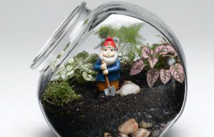 Бизнес-идея: Миниатюрный сад в бутылке