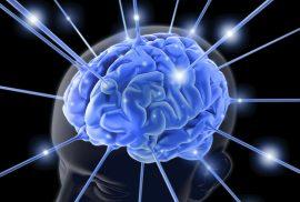 Советы по стимуляции работы мозга