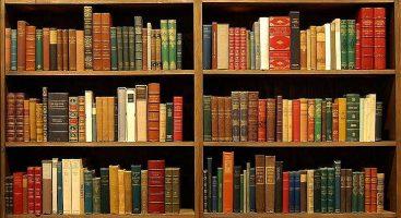 Бизнес идея: Как открыть книжный магазин