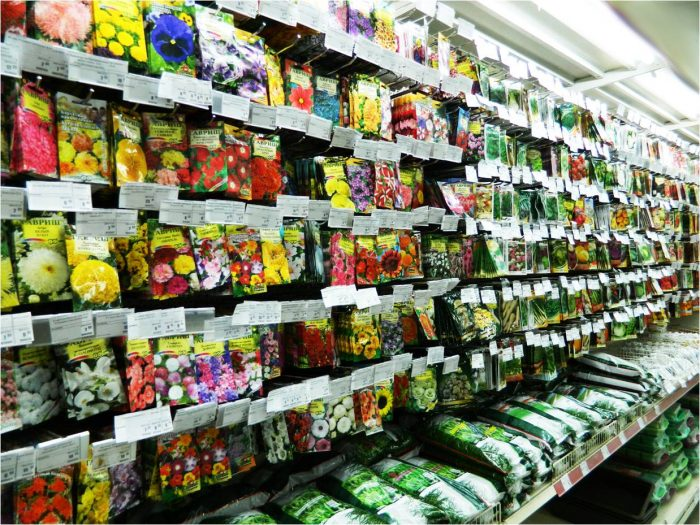 Бизнес-идея: Продажа семян