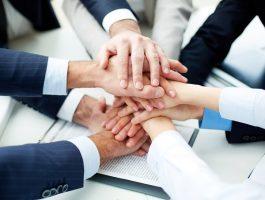 7 принципов выбора партнера для совместного проекта