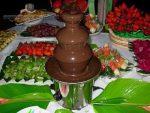 Бизнес-идея: Аренда шоколадных фонтанов.