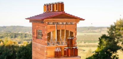 Бизнес-идея: Ульи для автоматического сбора мёда