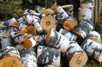 Бизнес идея: продажа дров