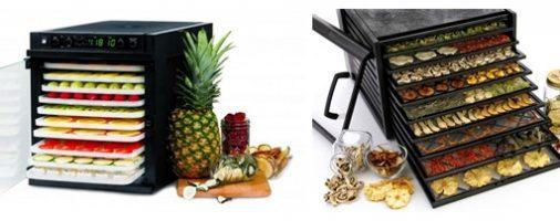 Бизнес идея: Как заработать на сушке овощей