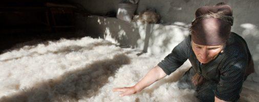 Бизнес-идея: Переработка шерсти