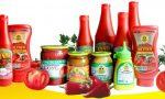 Бизнес-идея: Производство соусов (майонез, кетчуп и горчица)
