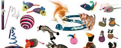 Бизнес-идея: Изготовление игрушек для домашних животных