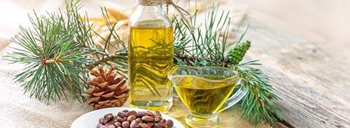 Бизнес-идея: Производство кедрового масла