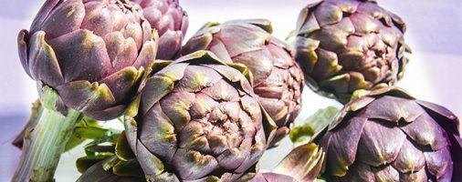 Фермерская бизнес идея: выращивание экзотических овощей
