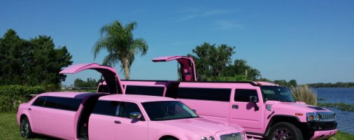 Бизнес-идея: Сдача в аренду лимузина