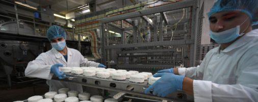 Бизнес-идея: Мини-завод по производству творога