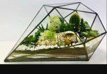 Бизнес-идея: Производство флорариумов