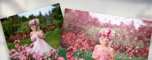 Бизнес-идея: Печать и обработка фотографий
