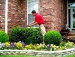 Бизнес-идея: Услуги профессионального садовника