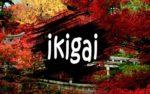 """Что такое """"Икигай"""" и как его найти"""